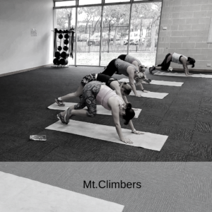 switch2fitness Mt.climber workout